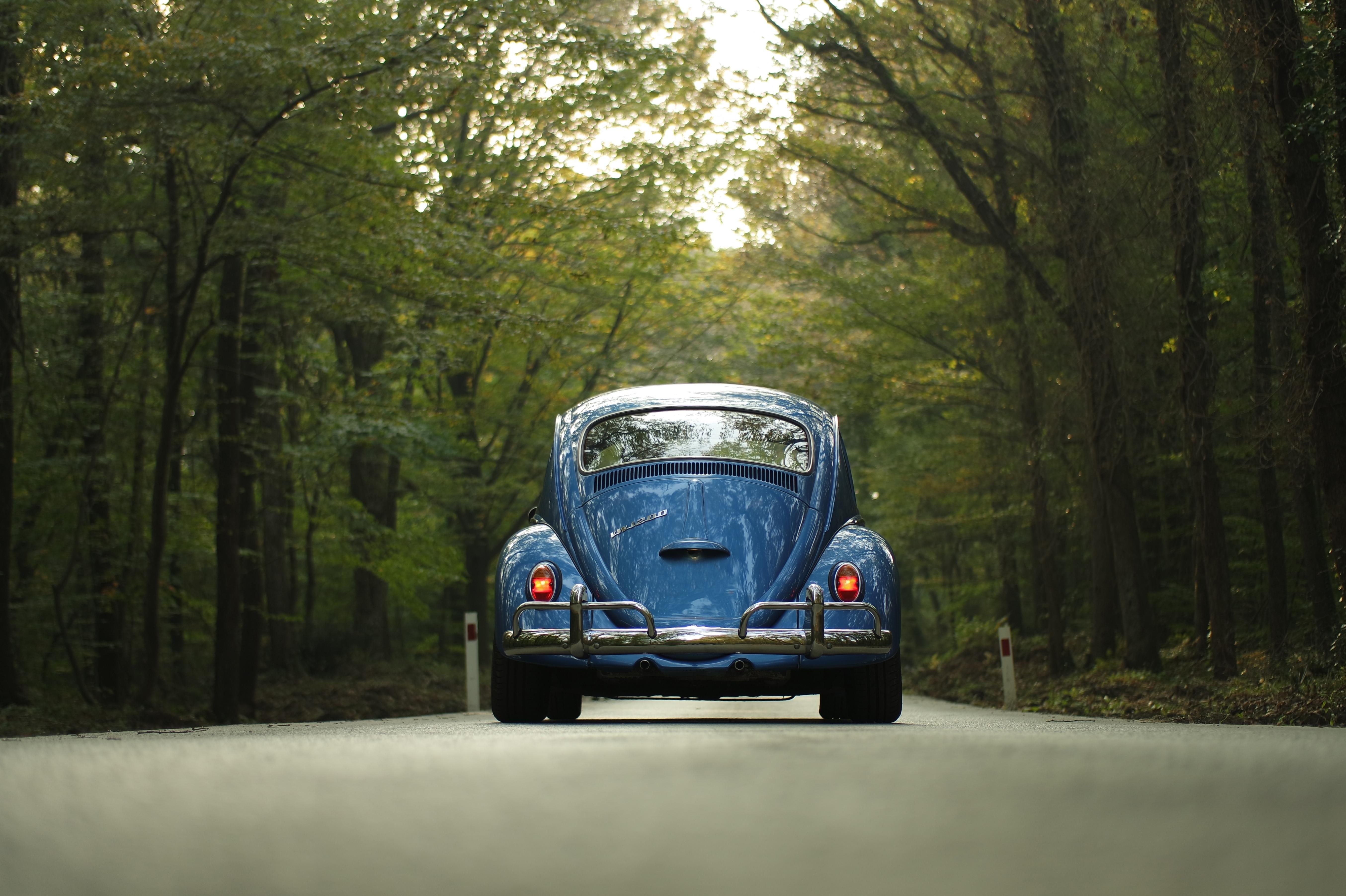En coche, ¿solo o acompañado?
